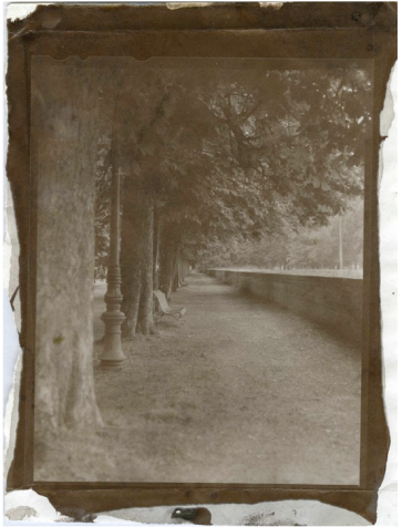 Lucca, Italy, 2014, albumen print